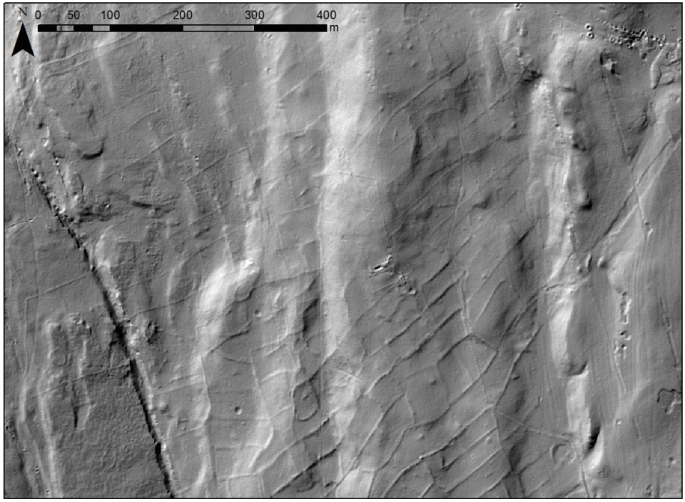 Figure 2: Coaxial field system boundaries visible  north of Grassington in 1m resolution lidar.